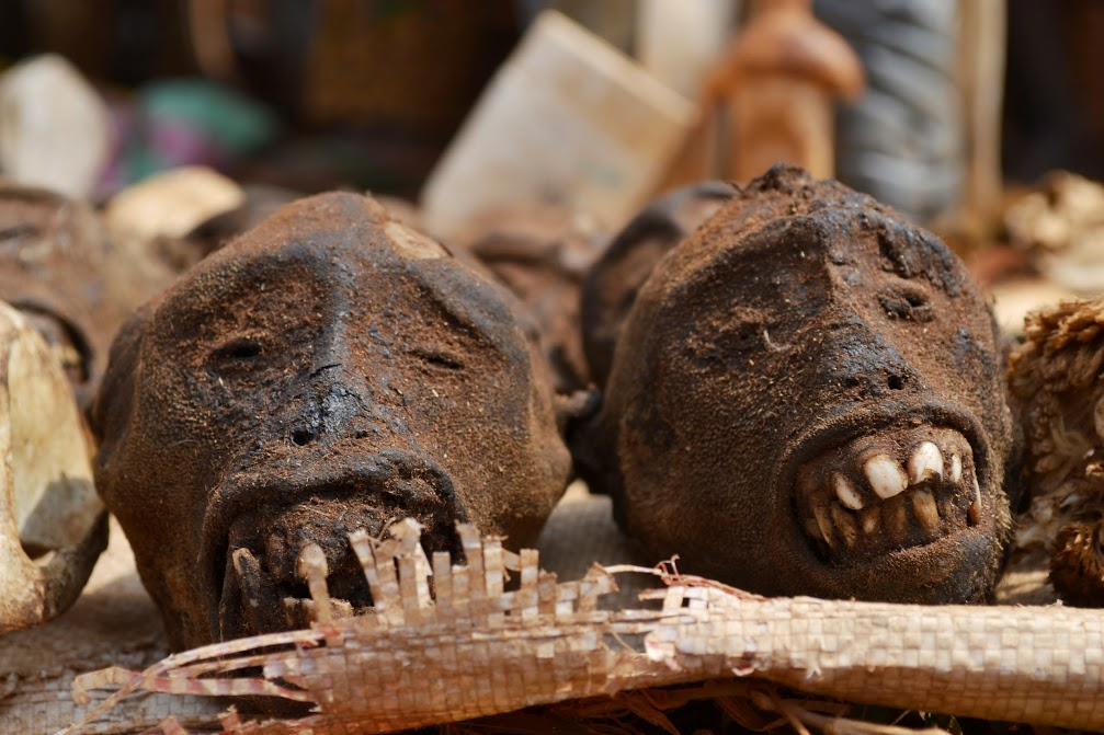 1. Piata de fetisuri Vogan - capete de maimute
