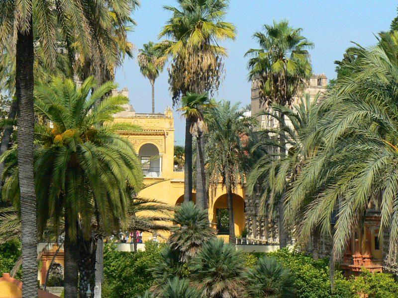 13. Curtea palatului din Sevilla, Spania