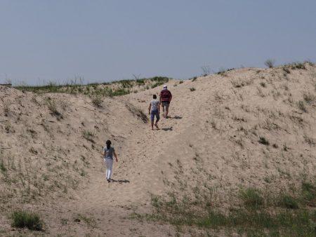 15. Dune nisip in Delta