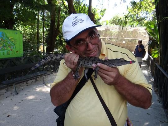 18. Crocodil