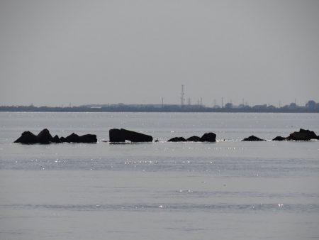 18. Dunarea se varsa in mare