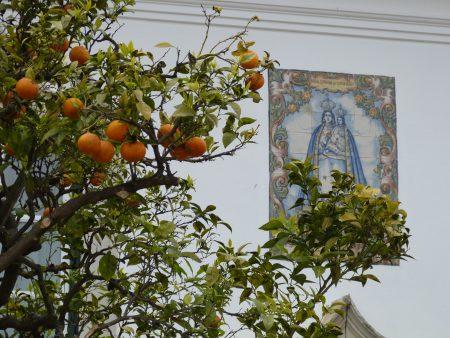07. Portocali in Algarve