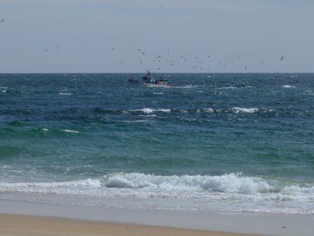 11. Atlantic in Algarve