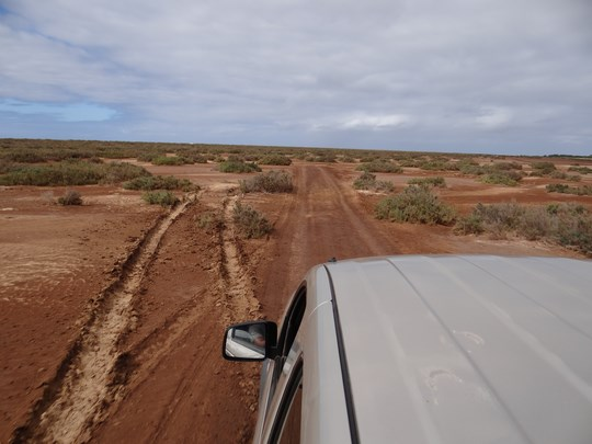 04. Jeep Boavista, Capul Verde