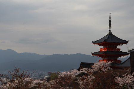 03. Kyoto in time of Sakura