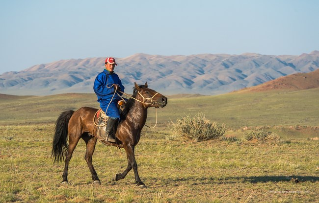 07. Calaret Mongolia