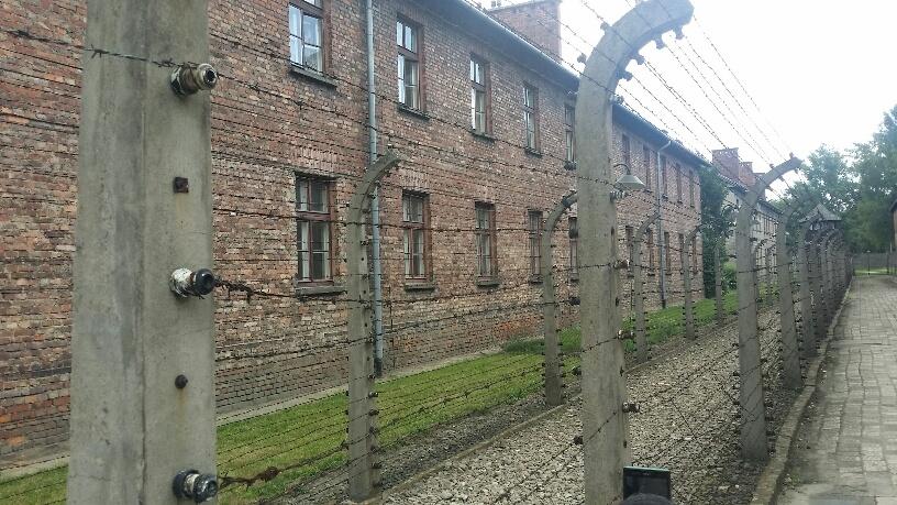 11. Lagar Auschwitz