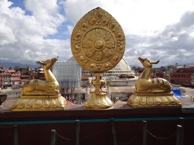 32. Caprioare budiste