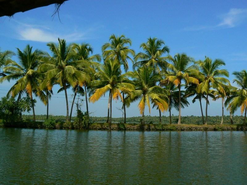 07. Kerala