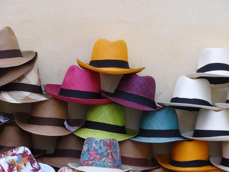 13. Panama hat