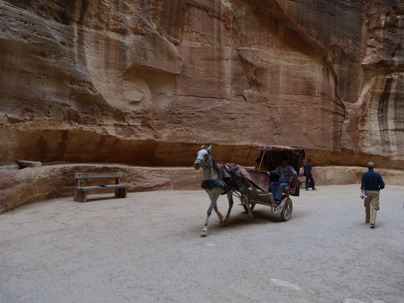 03. Caleasca in Petra
