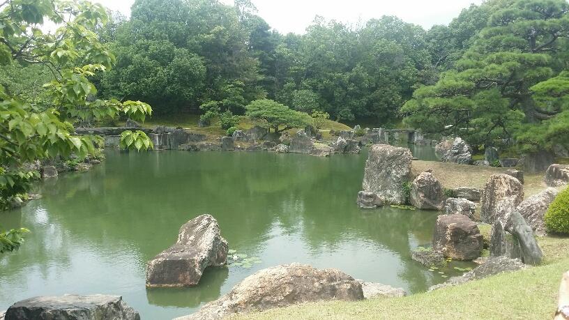 05. Lac japonez