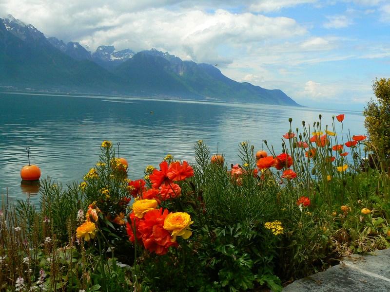 06. Lacul Geneva