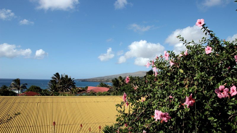 03. Rapa Nui