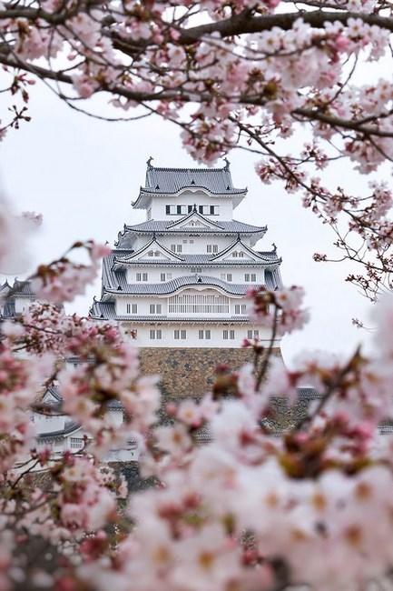 09. Himeji