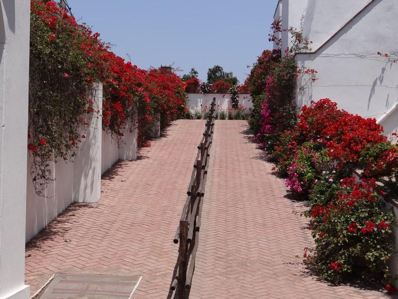 11-muzeul-larco-lima