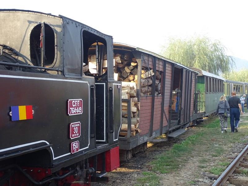 04-tren-pe-lemne