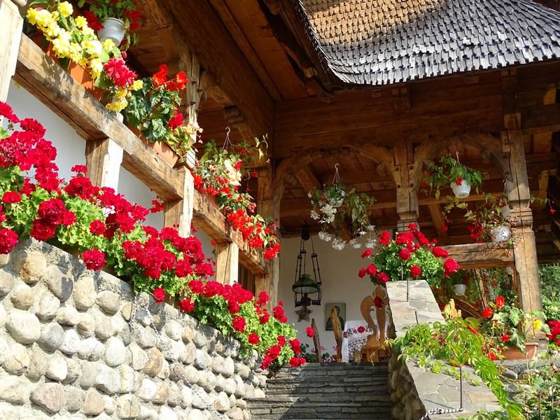 15-flori-maramures