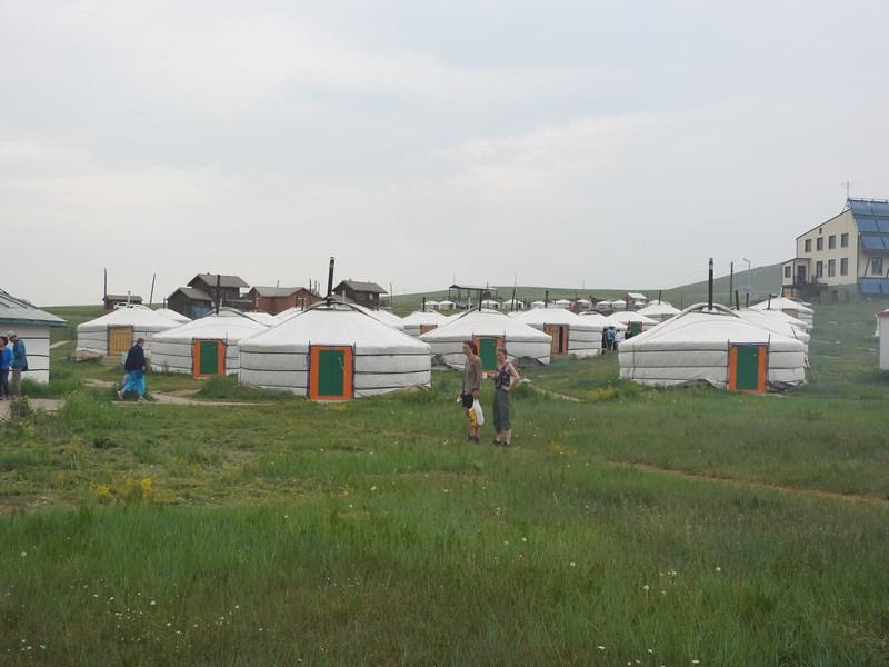 06-hustai-ger-camp