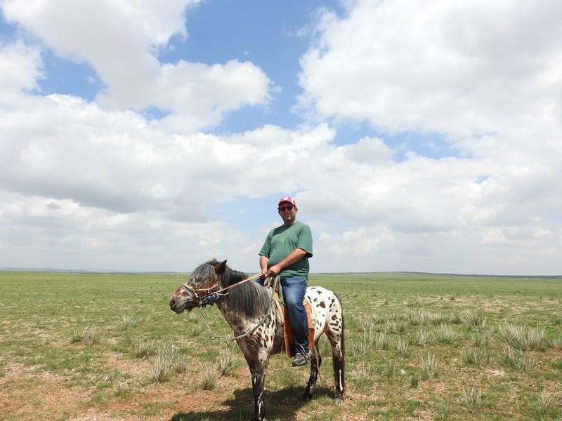 12-calare-in-mongolia