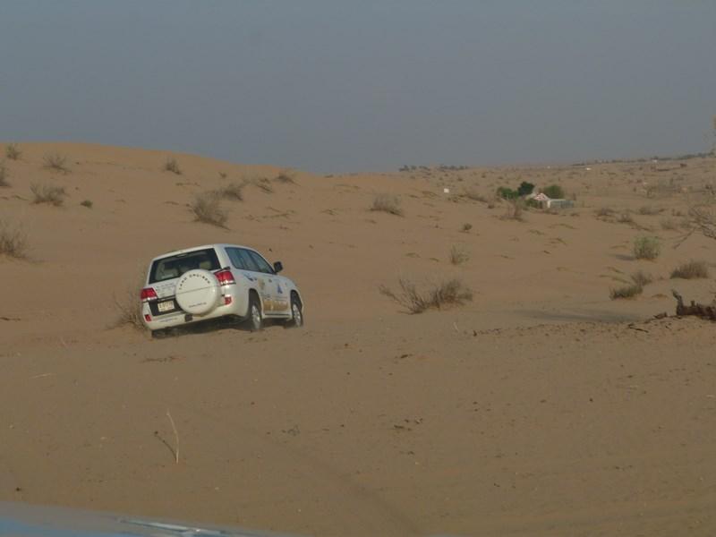 01-dune-bashing-dubai