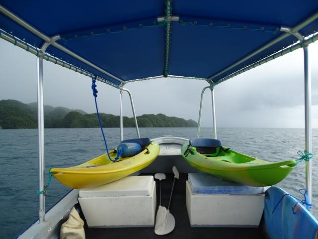 18-gata-de-canoe