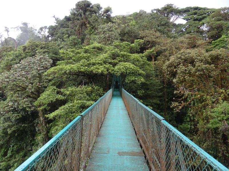18-monteverde-costa-rica