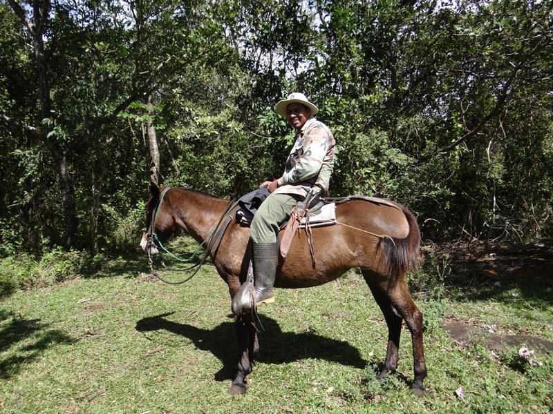 24-cowboy-costarican