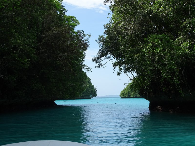 10. Laguna