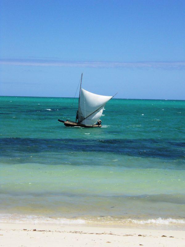 12. Mare in Madagascar