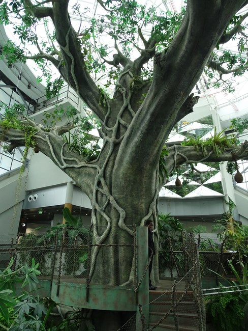 09. Copac Avatar