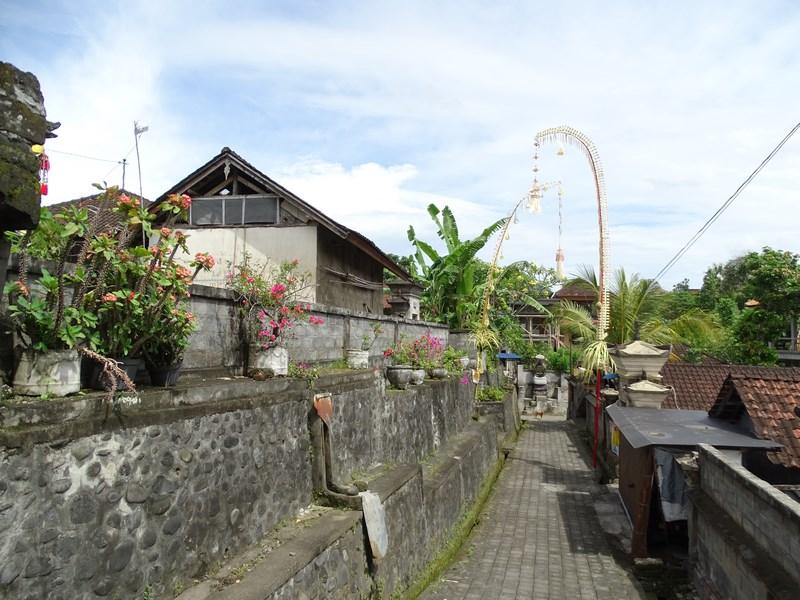 24. Cartier obisnuit Ubud, Bali
