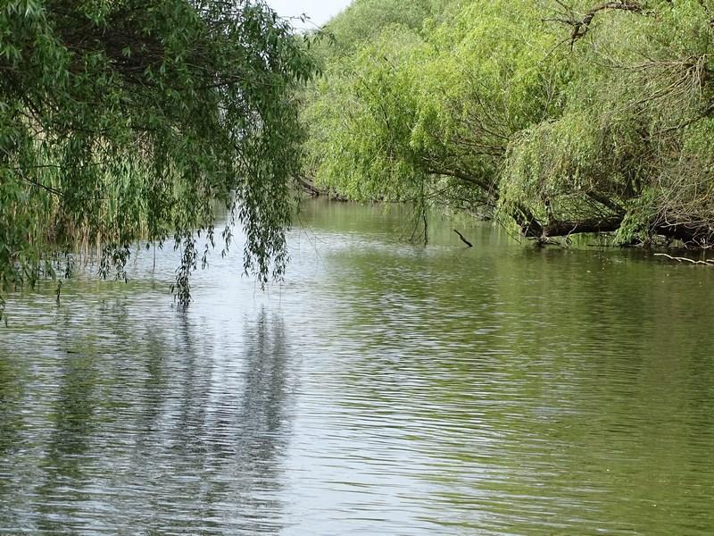 28. Canale mici delta