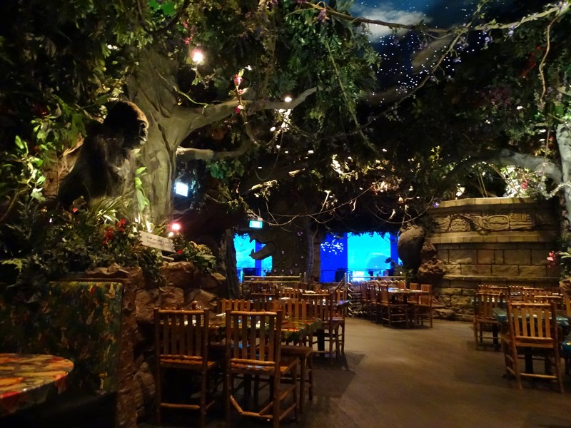 29. Rainforest Dubai