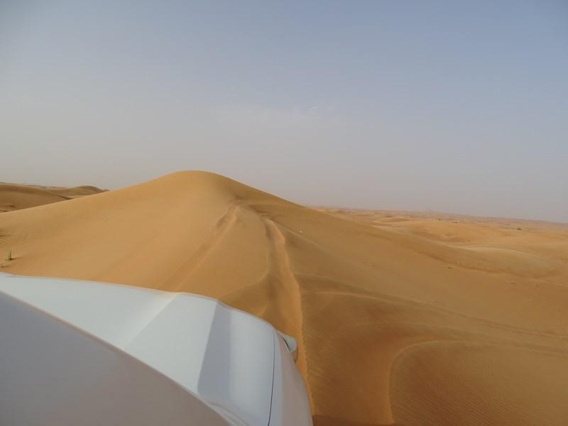 37. Desert Safari