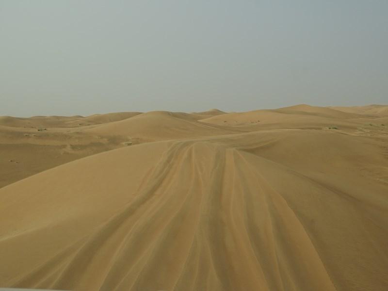 39. Dune bashing Dubai