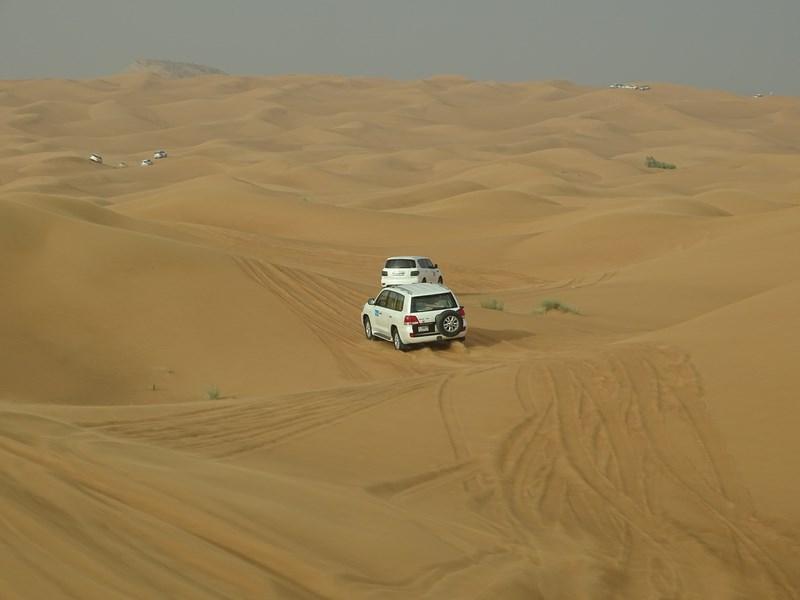 40. Pe dune