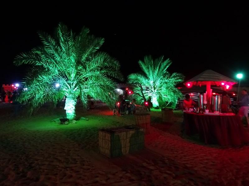 61. Noaptea in desert