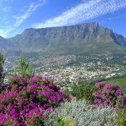 16. Cape Town