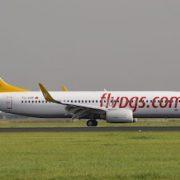 Fly Pegasus