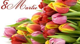 8 Martie Cristi2