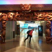 Bun Venit In Aoteaora Noua Zeelanda