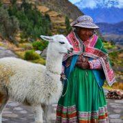 16. Localnica Cu Lama La Colca Canyon