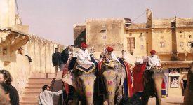 Jaipur Elefanti