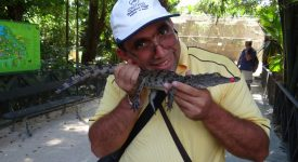 21. Mangaind Un Crocodil