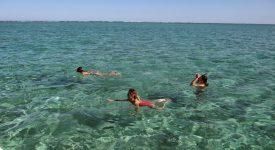 27. Snorkeling Mauritius