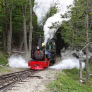 18. Locomotiva De Epoca