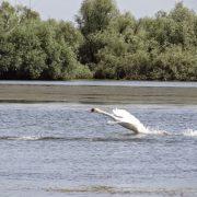 01. Delta Dunarii