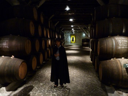 11. Tur - crama vinuri de Porto