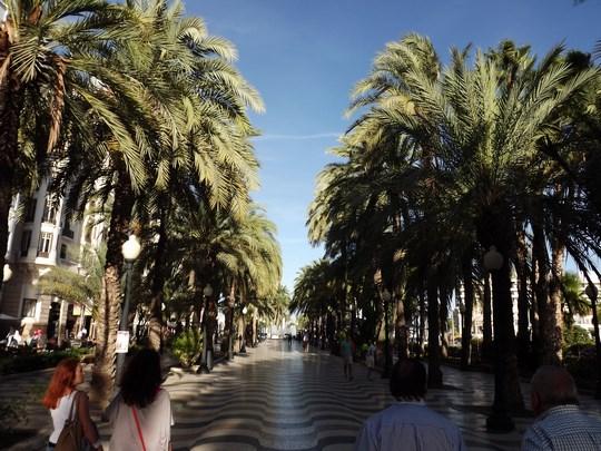 01. Alicante
